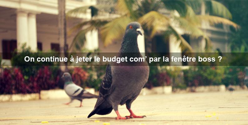 marketing-de-contenu-web-plus-rentable-que-la-publicite-les-annonceurs-sont-les-pigeons